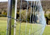 Field mesh, Stiff Stay, 2.5mm hi-tensile, hot dip galv fencing meshes